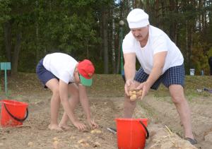 Лукашенко с сыном собрали 70 мешков картошки