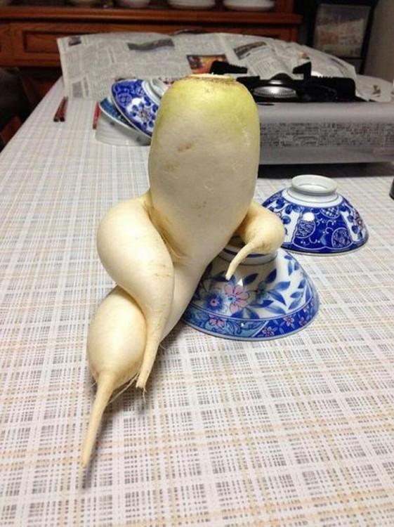 Frutas-y-verduras-de-figuras-raras-que-parecen-otra-cosa-12-561x750