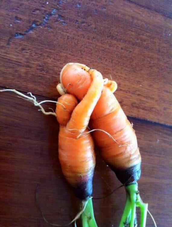 Frutas-y-verduras-de-figuras-raras-que-parecen-otra-cosa-15-570x750