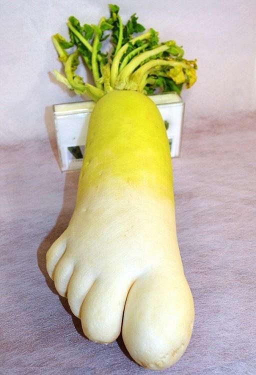 Frutas-y-verduras-de-figuras-raras-que-parecen-otra-cosa-18-512x750