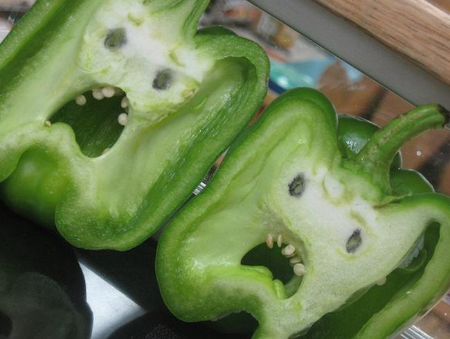 Frutas-y-verduras-de-figuras-raras-que-parecen-otra-cosa-6