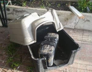 Во двор частного дома с неба упала необычная посылка…