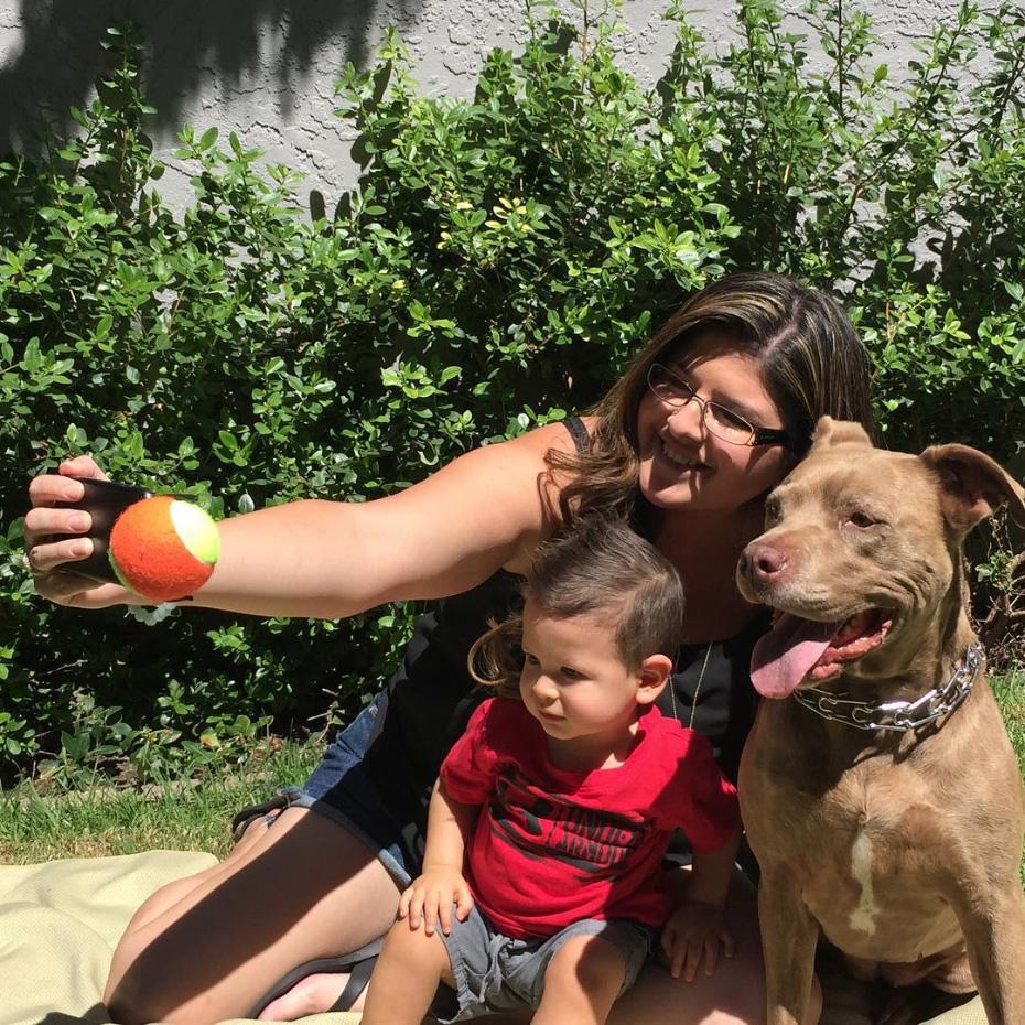 pooch-selfie-dog-clever-products-jason-hernandez-4