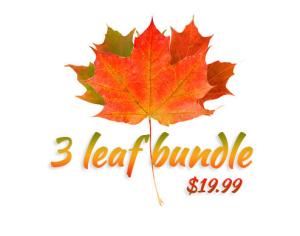 Как заработать на осенних листьях?