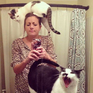 15 кошек, которым не знакомо понятие «личное пространство»