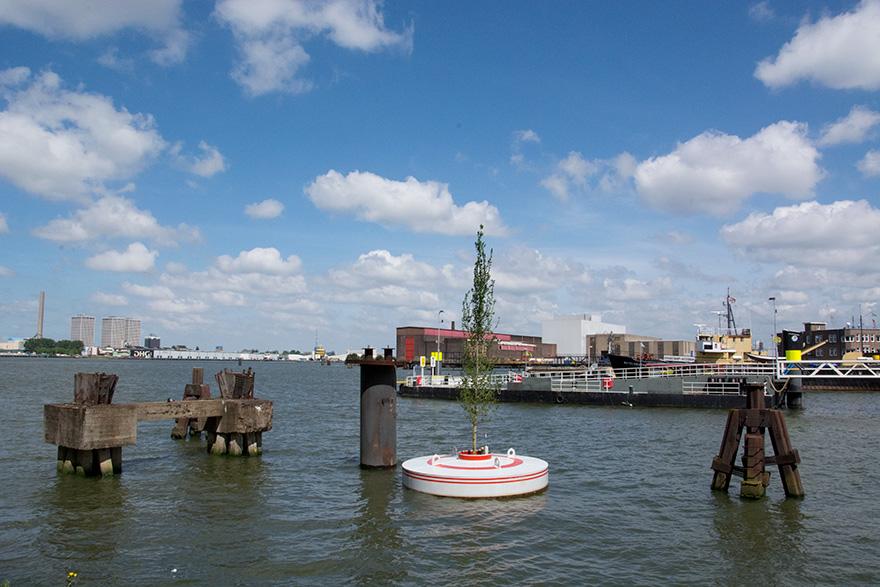 floating-trees-bobbing-mothership-rotterdam-jeroen-everaert-4