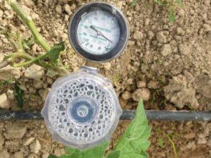 В Испании изобрели биоразлагаемый полимер для полива